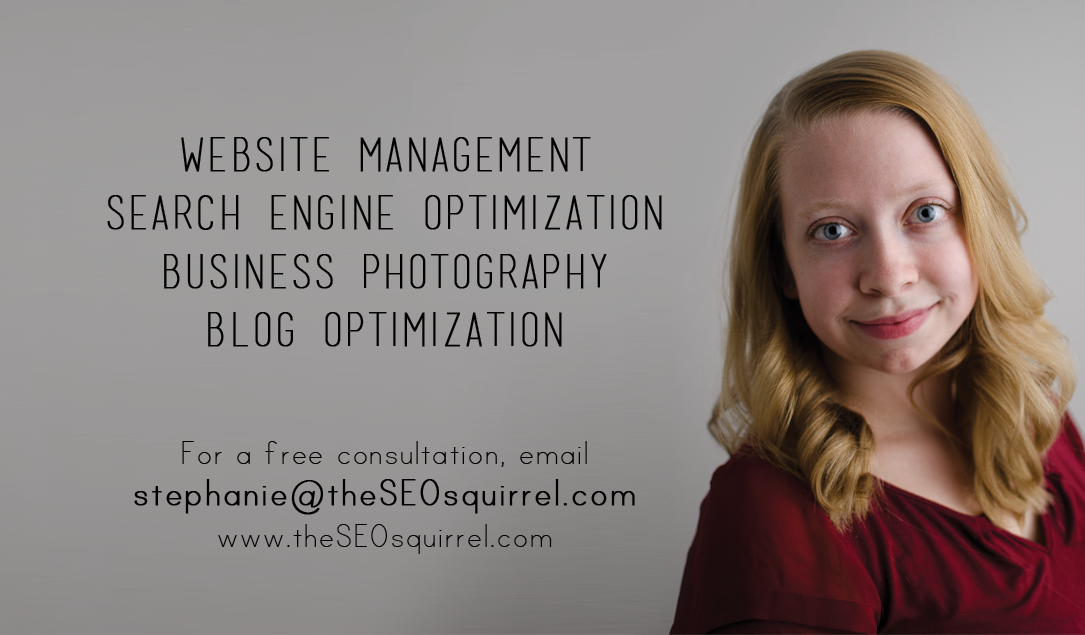 the SEO squirrel stephanie de montigny ottawa website management search engine optimization business photography contact info, importance of blogging